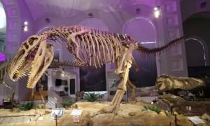 museo ciencia 2